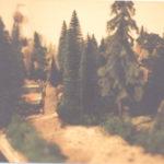 Unimog im Forst